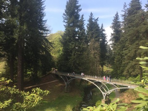 Iron Bridge Cragside